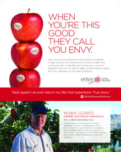 Envy Poster