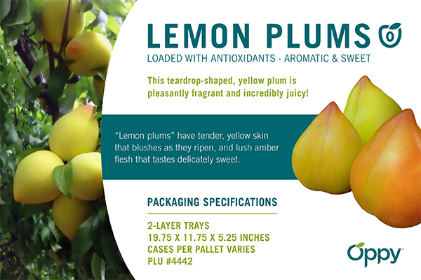 Lemonplum_Ecard