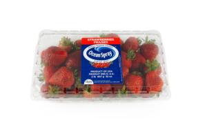 OceanSpray-Strawberries-2lb