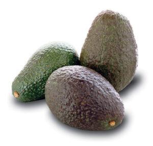 Avocado_group_no_plu_lowres_0